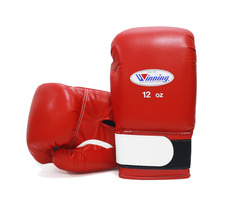 위닝 AM-12 글러브 WINNING AM-12 GLOVES 12OZ